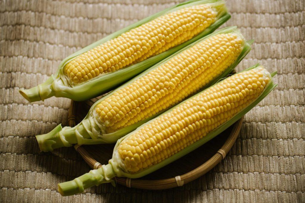 フルーツコーン ゴールドラッシュ Fruit Corn Gold Rush