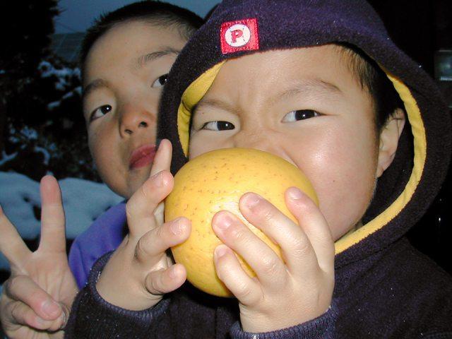 シナノゴールドを食べる子供達