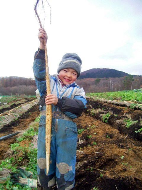 自然薯と少年