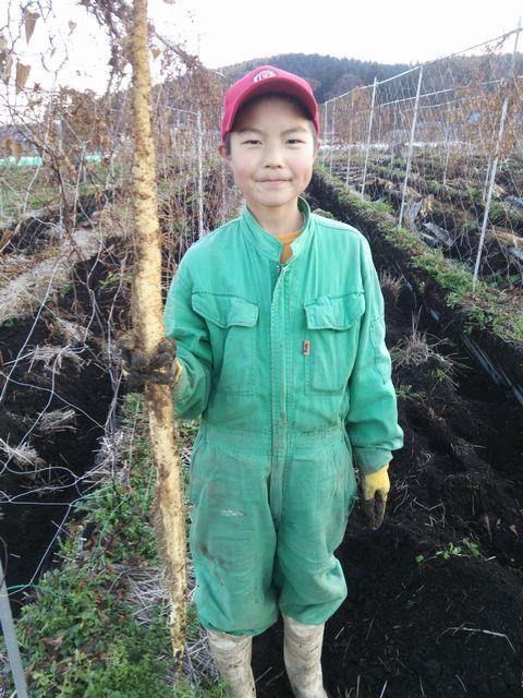 少年と自然薯の写真2