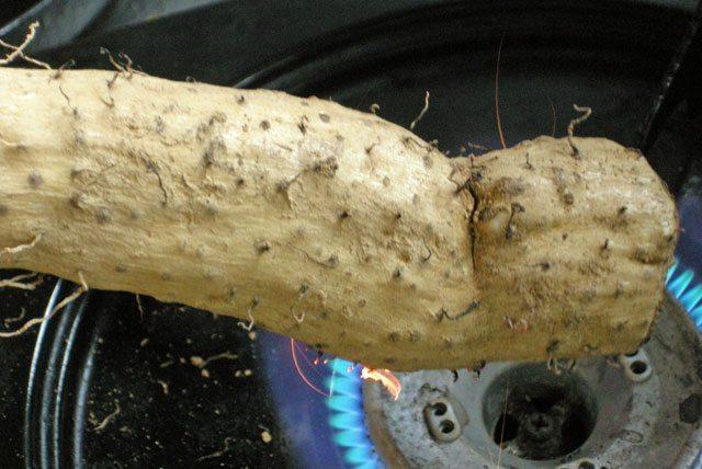 ひげ根を焼き切る