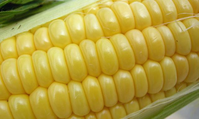 fruits corn