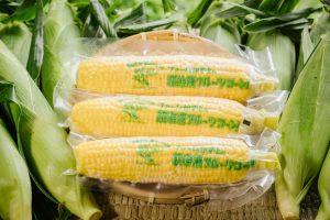 フルーツコーン ゴールドラッシュ Super Frozen Fruit Corn Gold Rush