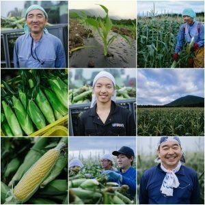 farmkazuto-collage写真2